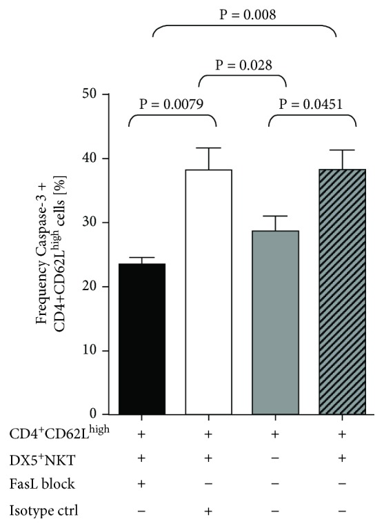 Intracellular flow cytometry analysis of caspase-3 in CD4 + CD62L high cells after 48 h of coculture with CD3 + DX5 + NKT cells and pretreatment with either FasL block or isotype control. Results are given as mean + SEM. Experiments were repeated at least three times ( ∗ P