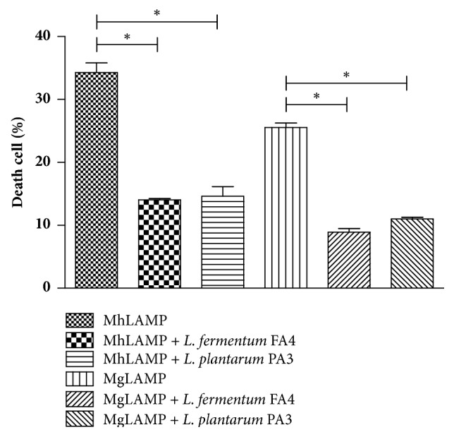 Death of HMVII cells after 24 h of incubation with LAMP from M. hominis (MhLAMP) or M. genitalium (MgLAMP) with and without L. plantarum PA3 or L. fermentum FA4. ∗p