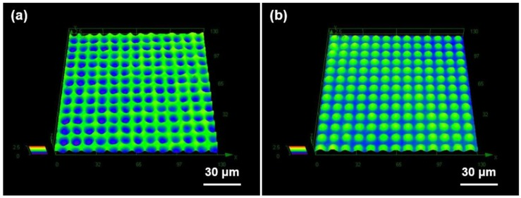 Three-dimensional surface profiles of ( a ) a GC mold and ( b ) a DMF microdome Al substrate obtained by laser confocal microscope.
