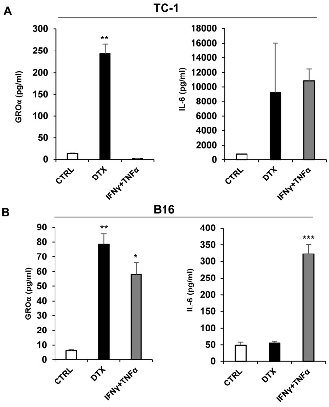 Secretion of IL-6 and GROα by murine TC-1 and B16 tumour cell lines. Enzyme-linked immunosorbent assay of IL-6 and GROα in supernatants of (A) TC-1 and (B) B16 cells treated with DTX and IFNγ + TNFα. Supernatants were tested in triplicate and the results from three independent experiments are presented as the mean ± standard deviation. *** P
