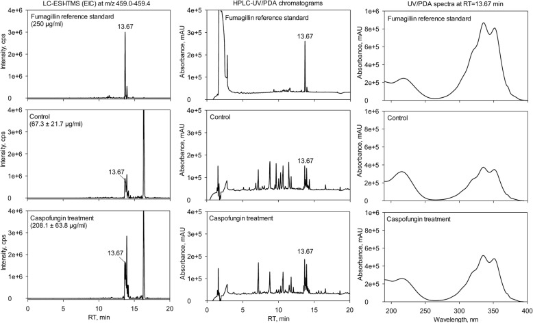 Caspofungin-induced increased production of the secondary metabolite fumagillin. LC-ESI-ITMS extracted ion chromatograms (EIC) at m/z 459.0–459.4 amu (left), HPLC-UV/PDA chromatograms (center) and UV/PDA spectra at RT = 13.67 min (right) of 250 μg/ml fumagillin reference standard (top) and crude extract of A. fumigatus without (center) and with caspofungin treatment (bottom)