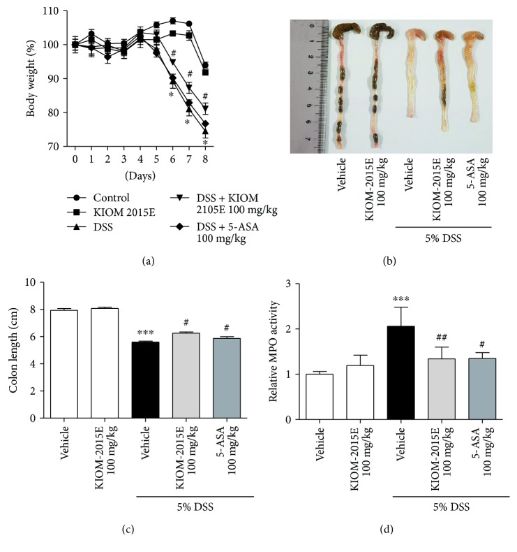 Effects of KIOM-2015E on body weight, colon length, and myeloperoxidase (MPO) activity in the dextran sodium sulfate- <t>(DSS-)</t> induced colitis model. (a) Body weight. (b and c) Colon length. (d) Myeloperoxidase (MPO) activity. Mice were orally administered KIOM-2015E or <t>5-aminosalicylic</t> acid (5-ASA) (100 mg/kg) before DSS treatment. The body weights were monitored before KIOM-2015E or 5-ASA treatment during the experimental periods. The colonic lengths of mice were measured after being isolated from the sacrificed mice. The MPO activity was measured using MPO activity assay kit according to the manufacturer's protocol. The results represent the mean ± standard error of the mean values of each mouse in the same group. ∗∗∗ p