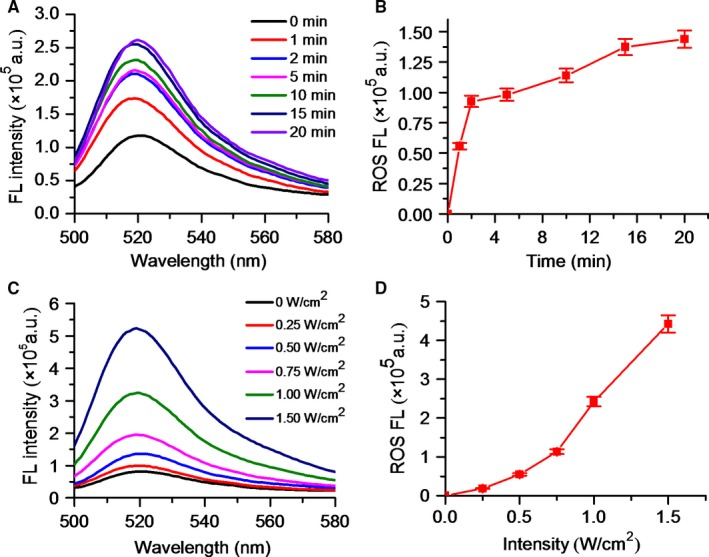 The ROS generation of DVDMS ‐Mn‐ LP s under US irradiation. A, Fluorescence emission spectra of DVDMS ‐Mn‐ LP s in <t>DCFH</t> ‐ DA solution with different US irradiation time. B, The fluorescence intensity changes of DCFH ‐ DA at 521 nm with the increase of US irradiation time. C, Fluorescence emission spectra of DVDMS ‐Mn‐ LP s in DCFH ‐ DA solution with different US irradiation intensities. D, The fluorescence intensity changes of DCFH ‐ DA at 521 nm with the increase of US irradiation intensity. DCFH‐DA, <t>2′,7′‐dichlorofluorescin</t> diacetate; ROS, reactive oxygen species
