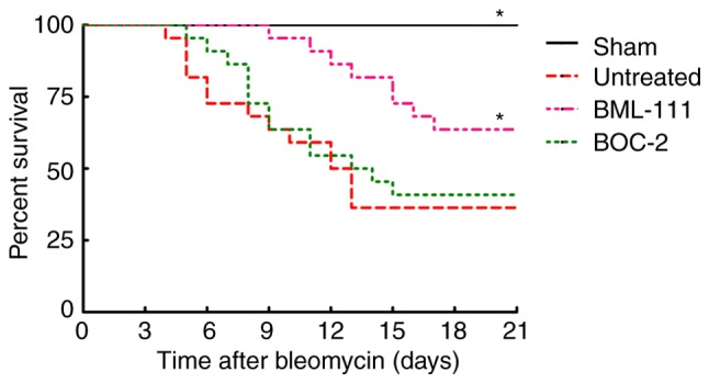 BML-111 treatment improved mortality after BLM instillation. Mice received intratracheal injection of 50 µ l of saline (Sham group) or BLM 2 mg/kg (for untreated group, BML-111 group and BOC-2 group). Mice were treated intraperitoneally with the saline (for Sham group and untreated group) 1 ml or BML-111 (for BML-111 group and BOC-2 group) 1 mg/kg every other day from days 0 to 21, and BOC-2 group were given 50 µ g/kg BOC-2 30 min before the addition of BML-111, and monitored daily for survival. Data are analyzed by Kaplan-Meier method (n=10 for the Sham group and n=22 for the others). * P