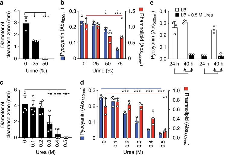 Urine and urea suppress quorum-regulated phenotypes. P. aeruginosa grown in 1× phosphate-buffered saline + 1% tryptone (PBS-T) supplemented with increasing concentrations of human urine was quantified for a zone of clearance around bacterial colony grown on milk plates, b pyocyanin (red bars) and rhamnolipid (blue bars) production. P. aeruginosa grown in LB supplemented with increasing amounts of urea was quantified for c zone of clearance around colonies grown on milk plates, d pyocyanin (red bars) and rhamnolipid (blue bars) production. e Quantification of pyocyanin produced by P. aeruginosa after 24-h growth in the presence or absence of 0.5 M urea followed by 16-h subculture growth in the presence or absence of 0.5 M urea. Data represent the mean and standard deviation of at least three independent replicates and were analyzed by unpaired t -test using GraphPad Prism software. Asterisk (*, **, and ***) indicates p