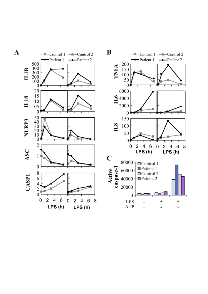 Expression and activation of the NLRP3 inflammasome is altered in peripheral blood mononuclear cells (PBMCs) of TNFAIP3 p.(Lys91*) carriers. Samples from TNFAIP3 p.(Lys91*) mutation carriers, patients 1 (II-1, woman, 30 years) and 2 (III-1, female, 8 years), were compared with sex-matched and age-matched controls 1 and 2, respectively. Relative expression of (A) NLRP3 inflammasome components and target cytokines and (B) inflammasome-independent proinflammatory cytokines was analysed in PBMCs by quantitative PCR and normalised against housekeeping gene expression (arbitrary units). (C) Whole blood was stimulated with LPS and ATP, followed by the detection of NLRP3 inflammasome-triggered caspase-1 activity in monocytes using a fluorescent FLICA probe; the data are presented as median fluorescence intensity (MFI).