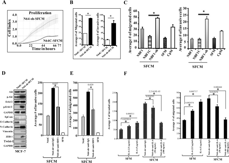 ATR down-regulation enhances the paracrine pro-carcinogenic effects of breast stromal fibroblasts in an <t>SDF-1/IL-6-dependent</t> manner (A) SFCM collected from the indicated cells were added separately to MCF-7 cells previously seeded into 96 wells, and cell proliferation was assessed by the real-time cell electronic sensing system. (B) MCF-7 cells were seeded onto the upper compartment of the migration and invasion plates, and then were incubated for 24 h in the presence of SFCM from the indicated cells. Error bars represent mean ± S.D (n=3). * P