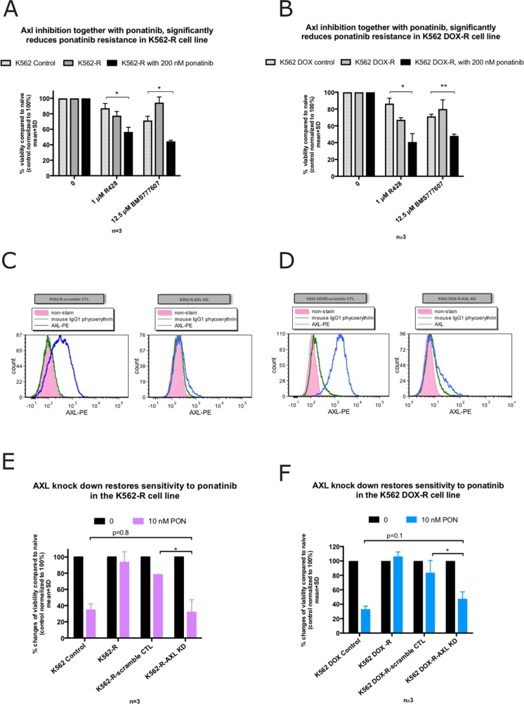 Inhibition of Axl restores ponatinib sensitivity in the K562-R and K562 DOX-R cell lines while AXL knockdown increases ponatinib sensitivity (A, B) Viability as assessed by Flow cytometry (AnnexinV-PE/7AAD double negative). The presence of the Axl inhibitor R428 (1 μM) or BMS777607 (12.5 μM) induced cell death significantly in (A) K562-R and (B) K562 DOX-R when co-treated with 200 nM ponatinib compared to their corresponding control lines. (C, D) Cell surface Axl expression was measured by flow cytometry in the AXL or scramble control shRNA transduced resistant cell lines. Compared to scramble control, AXL shRNA transduced cells demonstrated a reduction in Axl expression on the cell surface. (E, F) AXL knockdown in the K562 and K562 DOX ponatinib resistant cell lines demonstrated re-sensitisation to 10 nM ponatinib. Error bars represent SD, n≥3. * p