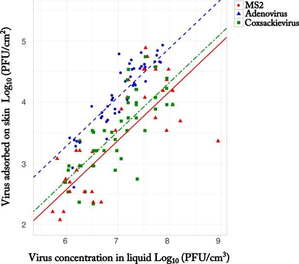 Number of bacteriophages and pathogenic viruses adsorbed on the skin per surface area as a function of seeding concentration. The plots show the log 10 -transformed <t>MS2</t> (red circles), adenovirus (blue triangles), and coxsackievirus (green squares) adsorbed on the skin per surface area as a function of the log 10 -transformed concentration of virus in the liquid. The regression lines represent the multiple regression models for the number of viruses adsorbed per surface area as a function of concentration.