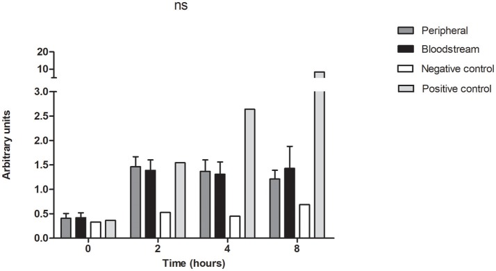 Bloodstream and peripheral isolates produce equivalent activation of NF-kB pathway in human monocytes. THP-1 Lucia® NF-kB cells were treated with the cell-free supernatant of 7 pairs of peripheral and bloodstream isolates. Cells were collected at baseline, 2, 4, and 8 h for quantification of luciferase activity by of Biolux® Gaussia luciferase Assay kit. Values obtained by luminescence were normalized to the protein absorbance of the cell lysate as measured by BioRad® DC protein assay. ns, not significant. Negative control = LB broth, positive control = Pam3CSK4 1μg/ml. Data presented represent mean and SEM of 3 independent experiments.