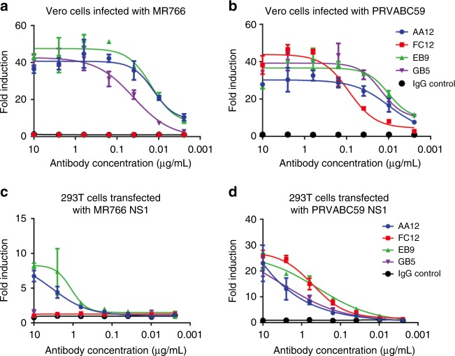 NS1-specific antibodies activate Fc-FcR effector functions in vitro. To examine the ability of NS1-specific antibodies to activate Fc-FcR mediated effector functions, a , b Vero cells were infected with MR766 and PRVABC59 Zika viruses or c , d HEK 293T cells were transfected with NS1 from MR766 and PRVABC59 Zika viruses. Infected Vero cells or transfected HEK 293T cells were used as targets for measuring antibody-mediated effector functions with a genetically modified Jurkat cell line expressing the human FcRγIIIa with an inducible luciferase reporter gene. Fold induction was measured in relative light units and calculated by subtracting background signal from wells without effector cells then dividing wells with antibody by wells with no antibody added. All mAbs were tested at a starting concentration of 10 μg per mL and were serially diluted four-fold. Assays were performed twice as technical duplicates and one of two replicates is shown. A non-linear regression best-fit curve was generated for each dataset using GraphPad Prism 5. Error bars represent SEM