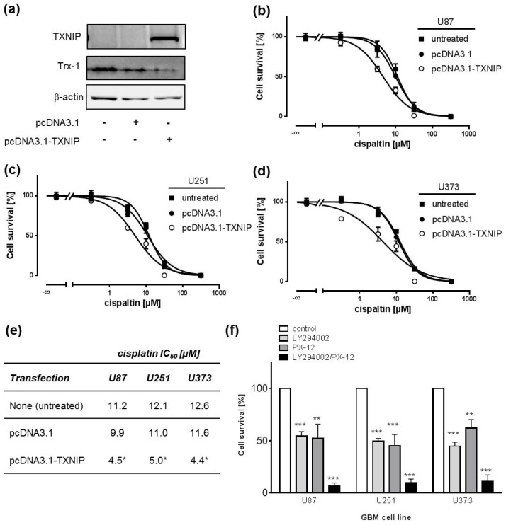 Overexpression of the tumour suppressor TXNIP inhibits Trx expression and sensitizes GBM cell lines to cisplatin. ( a ) Representative Western blots of U87 cells showing overexpression of TXNIP and downregulation of Trx-1 protein expression after transient transfection with pcDNA3.1-TXNIP or empty vector (pcDNA3.1) 48 h post-transfection. β-actin Western blot was performed to control for loading; ( b – d ) MTT assays with cisplatin concentration-response curves showing sensitization of U87 ( b ), U251 ( c ), and U373 ( d ) cells after transient transfection with empty vector (pcDNA3.1) or pcDNA3.1-TXNIP. Cells were incubated with cisplatin for 72 h at 24 h post-transfection; ( e ) Respective cisplatin IC 50 values derived from curves presented in b – d ( n = 4, * p