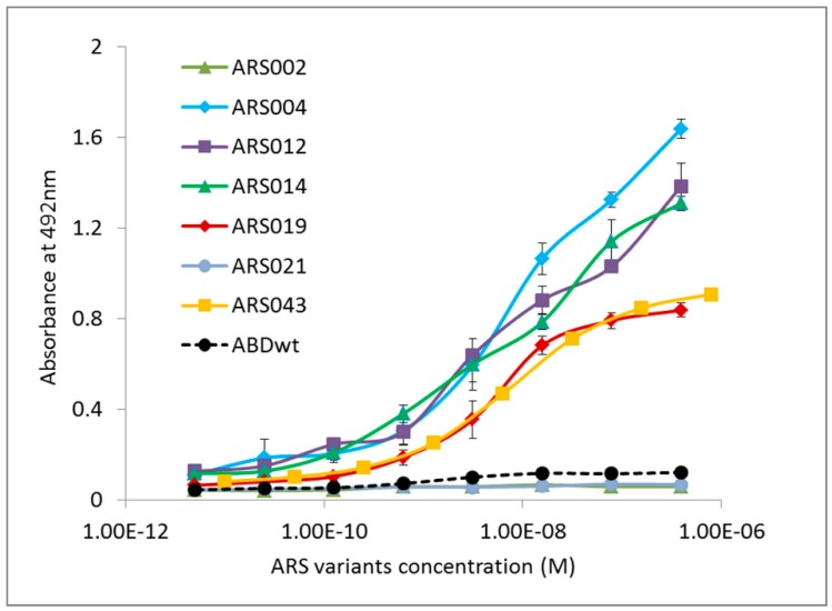 Binding of the selected representatives of ARS sequence families to the immobilized human IL-17RA-IgG chimera in ELISA. Purified binding proteins were produced in the form of in vivo biotinylated His 6 -ARS-TolA-AVI fusion proteins. Binding to IL-17RA-IgG was visualized by streptavidin-HRP conjugate. Each point represents the mean value ± standard deviation (SD).