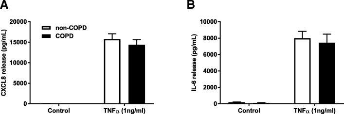 Similar cytokine release upon TNFα challenge in COPD versus non-COPD. Pulmonary fibroblasts from COPD ( n = 15 ) and non-COPD patients ( n = 27 ) were unstimulated (control) or challenged with TNFα in 0.1% BSA-DMEM (1 ng/ml) for 48 h. Cell free supernatants were collected and CXCL8 ( a ) and IL-6 ( b ) release was measured using ELISA. All data are represented as mean ± standard error of the mean. Two-way ANOVA with Bonferroni post-hoc testing was used to determine statistical significance. There were no statistical differences