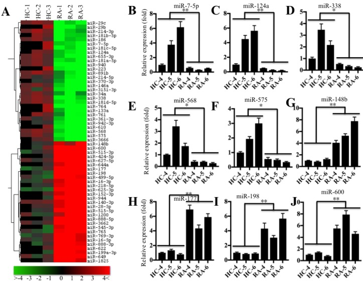 miR-7-5p was significantly downregulated in RA patients. (A) The heat maps of the consistently altered miRNAs in RA patients are shown. RNA samples from three paired joint tissue specimens (HC-4, -5, -6 and RA-4, 5, -6) were subjected to miRNA microarray analysis. The elevated miRNAs are indicated in red, and the downregulated miRNAs are shown in green. qRT-PCR was performed to verify the expression of miR-7-5p (B) , miR-124a (C) , miR-338 (D) , miR-568 (E) , miR-575 (F) , miR-148b (G) , miR-177 (H) , miR-198 (I) and miR-600 (J) in the RNA samples used in A. * P
