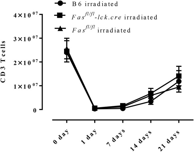 T cell recovery after irradiation-induced lymphopenia. B6 mice, Fas fl/fl lck-cre, and Fas fl/fl mice were irradiated with 6 Gy, <t>CD3</t> T cells in the spleen were counted and analyzed by flow <t>cytometry.</t> Approximately 3–4 mice per group per time point (5-time points total) were analyzed.