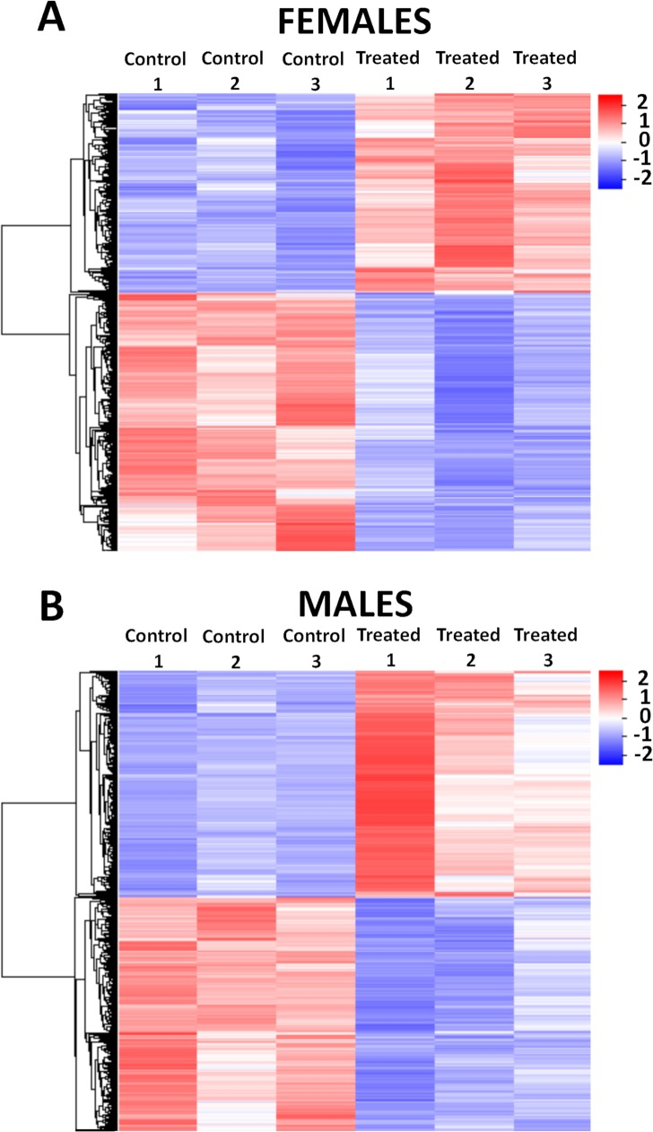 Heatmap of differentially expressed genes detected by <t>RNA-seq</t> in adult S . mansoni female and male worms treated with GSK343. The heatmaps show the hierarchical clustering of differentially expressed genes (lines) in <t>three</t> biological replicates (columns) of female (A) and male (B) adult worm samples, either for controls or for treated parasites, as indicated at the top of the heatmaps. Parasites were exposed for 48 h in vitro to vehicle (control) or to 20 μM GSK343. Gene expression levels were measured by RNA-seq and are shown as Z-scores, which are the number of standard deviations below (blue, downregulated) or above (red, upregulated) the mean expression value among treated and control samples for each gene; the expression level Z-scores are color-coded as indicated on the scale at the bottom.