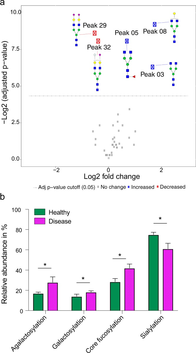 Significant changes of serum N-glycosylation in dogs with a patent D. immitis infection. Glycan peaks/classes were tested for significance using linear mixed-effects models. p-values were adjusted based on Benjamini and Hochberg method. The analysis is based on 5 biological and 2 technical replicates per group (healthy and disease; patent set). ( a ) Volcano Plot comparing serum N-glycan peaks from dogs infected with D. immitis to a healthy control group. Illustrated is the log2 fold change in glycan abundance and the negative log2 of adjusted p-values. The horizontal dashed line represents the adjusted p-value cutoff (0.05). The points above the dashed line are glycan peaks that decrease (red) and increase (blue) significantly. See Supplementary Table S4 for quantification data. ( b ) Significant changes in all analyzed glycan classes in dogs with a patent D. immitis infection. Glycan classes were identified and quantified by exoglycosidase digestion with α1-2,4,6 Fucosidase, β1-4 Galactosidase or α2-3,6,8 Neuraminidase. See Supplementary Fig. S4 for visualization of the glycan classes. Bar graphs show mean + s.d. Agalactosylation, adj. p-value = 0.001; galactosylation, adj. p-value = 0.003; core fucosylation, adj. p-value = 0.001; sialylation, adj. p-value = 0.001.