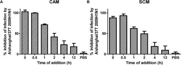 (A,B) Time of addition assay for analysis of mechanism of CAM and SCM against influenza A/shanghai/37T (2009H1N1) infection. MDCK cells cultured in <t>DMEM</t> supplemented with 10% <t>FBS</t> (Biowest, France), penicillin (100 U/ml), and streptomycin (10 μg/ml) at 37°C/5% CO 2 were infected with influenza A/shanghai/37T (2009H1N1) at 0.1 MOI in DMEM containing 2 μg/mL TPCK-Trypsin. CAM and SCM diluted in DMEM to give a final concentration of 20 μM were added to mixture of virus and cells at 0, 0.5, 1, 2, 4, and 12 h post infection. Inhibition activity of CAM and SCM was measured by CPE reduction assay using CCK-8, according to the manufacturer's instruction. The data were presented as means ± SE of triplicate assays and the experiment was repeated at least twice.
