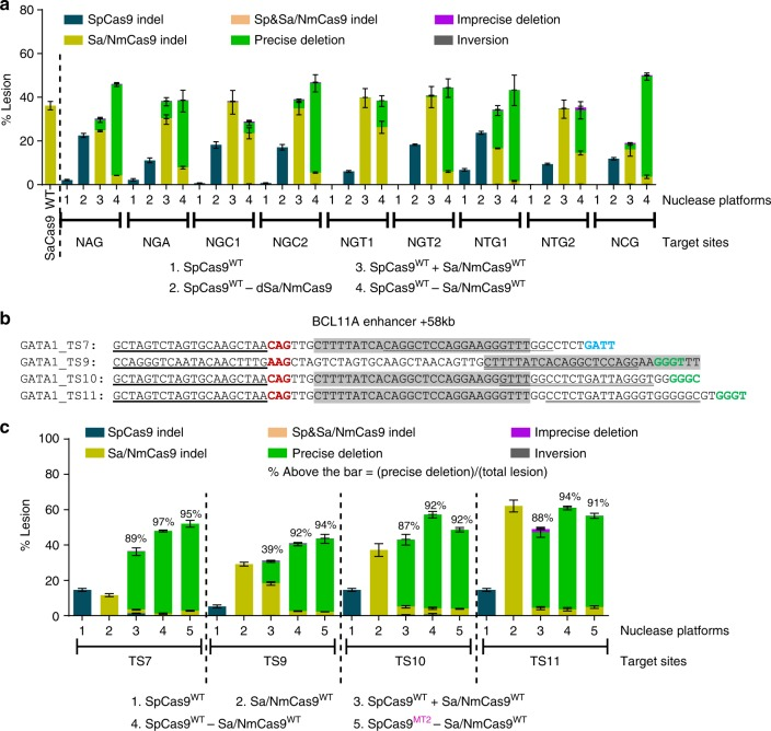 Cas9–Cas9 fusions expand the targeting range of SpCas9 allowing deletion of the GATA1-binding element in the BCL11A enhancer+58 kb. a Lesion rates and types at tandem target sites, with suboptimal SpCas9 but canonical SaCas9 PAMs (Supplementary Fig. 8) are determined by deep sequencing with bulk analysis. SaCas9 generates robust editing whereas SpCas9 displays low or no activity. In Cas9–Cas9 fusion format, SpCas9 cuts effectively at these protospacers as observed from the SpCas9–dSaCas9 fusions or the fused wild-type nucleases. b Sequence information of the four target sites chosen for more detailed assessment of the application of Cas9–Cas9 fusions for the deletion of the GATA1-binding element in the functional core of the BCL11A enhancer+58 kb (highlighted in gray 21 ). c Lesion rates and types at four target sites spanning the GATA1 element are determined by deep sequencing after UMI-correction. Deep sequencing data are from three independent biological replicates performed on different days in HEK293T cells (Supplementary Data 1 ). Error bars indicate ± s.e.m