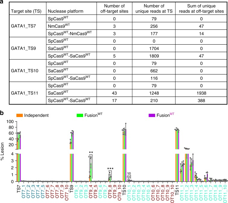 Cas9–Cas9 fusions achieve robust and specific genome editing. a Summary of the GUIDE-seq genome-wide off-target analysis of SpCas9 WT , Sa/NmCas9 WT , and SpCas9 WT -Sa/NmCas9 WT at four GATA1 target sites (Supplementary Data 2 ). b Deep sequencing determined lesion rates for these nucleases at a subset of off-target sites discovered by the GUIDE-seq data or predicted by CasOFFinder (Supplementary Data 3 ). The names of SpCas9, NmCas9, and SaCas9 off-target sites are colored in dark red, blue, and green. The GUIDE-seq result is from single experiment, and amplicon deep sequencing data are from three independent biological replicates performed on different days in HEK293T cells (Supplementary Data 1 ). Error bars indicate ± s.e.m. Statistical significance is determined by one-way analysis of variance (ANOVA), *, **, ***, and NS denote BH-adjusted P -values of