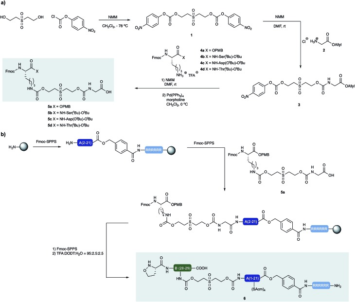 (a) Synthesis of building blocks with incorporated cleavable linkers. N -methylmorpholine (NMM) (b) synthesis of peptide segment 6 and incorporation of linker building block 5a by standard <t>Fmoc-SPPS.</t>