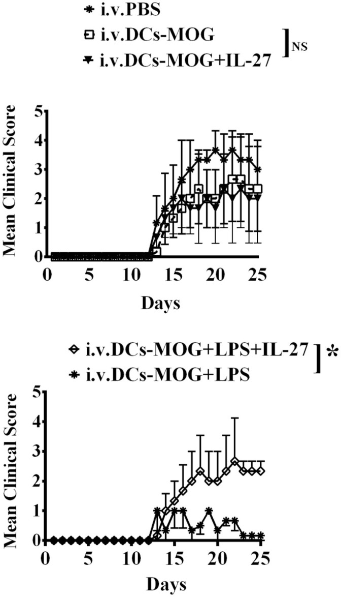 i.v. transfer of IL-27-treated mature DCs induced by LPS inhibits immune tolerance mediated by LPS-stimulated DCs in vivo . C57 BL/6J mice were immunized with MOG peptide (200 μg/per mouse) and CFA. Immature dendritic cells (DCs) were incubated with IL-27 (DCs+IL-27) or LPS (DCs+LPS) or both IL-27 and LPS (DCs+LPS+IL-27). Mice in control group were i.v. transferred with PBS. EAE was then induced and shown by clinical score. Error bars in this figure represent mean and SEM of triplicate determinations of EAE clinical score in one experiment ( n = 3, two-way ANOVA test, P (DC, DC+IL−27) = 0.7960; P (DC+LPS, DC+LPS+IL−27) = 0.0001; NS, no significant difference).