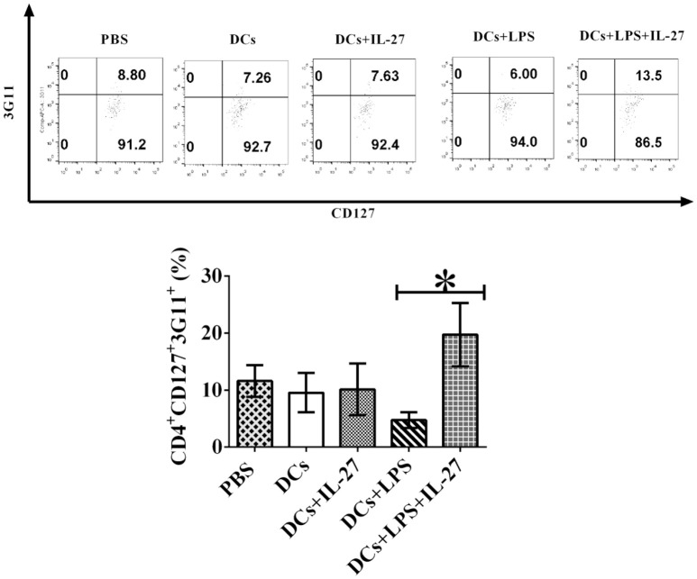 IL-27 facilitates LPS-stimulated mature DC-mediated development of CD4 + CD127 + 3G11 + T reg subset ex vivo . Bone marrow-derived DCs were pulsed with MOG peptide and treated with IL-27 (20 ng/ml, 72 h) (DCs+IL-27) or LPS (DCs+LPS) (1 μg/ml, 24 h) or both LPS and IL-27 (DCs+LPS+IL-27). These DCs were then i.v. transferred into mice with EAE shown in Figure 4 . Mice treated with PBS are control. Spleen cells were isolated and re-stimulated with MOG peptide (0.1 μM) and IL-2 (1 ng/ml) for 72 h. Cells were collected and CD4 + CD25 + FoxP3 + GITR + T regs were gated. The frequency of CD127 + 3G11 + cells is demonstrated. T lymphocytes incubated with isotype control antibodies are isotype control. Error bars indicated in this figure represent mean and SD of frequency of CD4 + CD127 + 3G11 + cells in three independent experiments [ n = 3, t test, P (DC, DC+IL−27) = 0.8682; P (DC+LPS, DC+LPS+IL−27) = 0.0105].