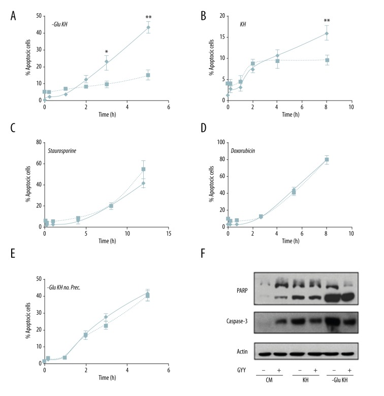 Effect of GYY4137 on HL-1 cell apoptosis. ( A ) Effect of GYY4137 preconditioning on apoptosis of cells cultured in glucose and amino acid deprivation medium (-Glu KH). ( B ) Effect of GYY4137 preconditioning on apoptosis of cells cultured in amino acid deprivation medium (KH). ( C, D ) Effect of GYY4137 preconditioning on apoptosis of cells treated with staurosporine ( C ) and doxorubicin ( D ). ( E ) Effect of GYY4137 on apoptosis of cells during starvation in -Glu KH medium without preconditioning. In all cases, results show percentage of apoptosis over time. Dashed lines represent cells treated with active GYY4137 and solid lines represent cells treated with inactive GYY4137. Three replicates in three differences experiments were performed per condition. * p