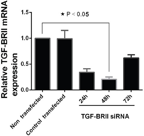 The U-373 MG Tumor Cells Transfected with TGFβ RII siRNA. Total RNA was extracted and mRNA was analyzed via qRT-PCR assay at 24, 48, and 72 hours following transfection. The relative mRNA expression was quantified by 2-(ΔΔCT) formula (β-actin, internal control) (data presented as mean±SD; *P