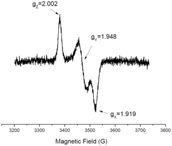 EPR Spectrum of the [2Fe-2S] + cluster of Δ46AtDGAT3. The EPR spectrum of an AtDGAT3 solution (concentration: 250 μM) was recorded at 50 K under non-saturating conditions. The spectrum indicates a rhombic symmetry with 3 distinct principal g-values (g z = 2.002, g y = 1.948, g x = 1.919).