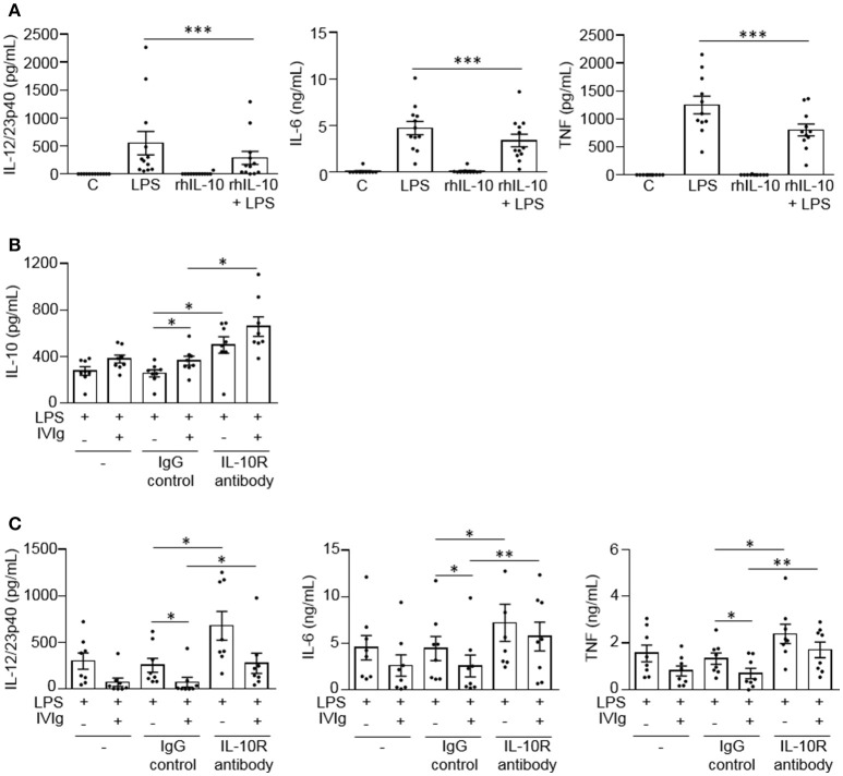 IL-10 signaling contributes to reduced LPS-induced pro-inflammatory cytokine production by IVIg-activated monocytes. In (A) monocytes from healthy control participants were left untreated (C) or stimulated with LPS (100 ng/ml), recombinant human IL-10 (rhIL-10; 400 pg/ml) or [rhIL-10 (400 pg/ml) + LPS (100 ng/ml)] for 24 h. Clarified cell supernatants were assayed for (A) IL-12/23p40, IL-6, and TNF. In (B,C) monocytes from healthy control participants were untreated (–) or pre-treated for 1 h with an IgG isotype control (IgG; 5 μg/ml) or an IL-10 receptor (IL-10R) blocking antibody (5 μg/ml). Cells were then stimulated with LPS (100 ng/ml) or [IVIg (5 mg/ml) + LPS (100 ng/ml)] for 24 h. Clarified cell supernatants were assayed for (B) IL-10, (C) IL-12/23p40, IL-6, and TNF. Data are mean ± SEM from n = 12 (A) or 8 (B,C) participants performed as independent experiments, assayed in duplicate. * p