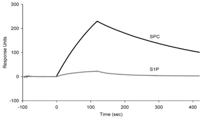 Bindinganalysis of the m012 aptamer to SPC and S1P using SPR. The biotinylated SPC and S1P were immobilized on each flow cell at similar amounts (~250 RU). 400 nM aptamer was injected over the ligands for 2 min.