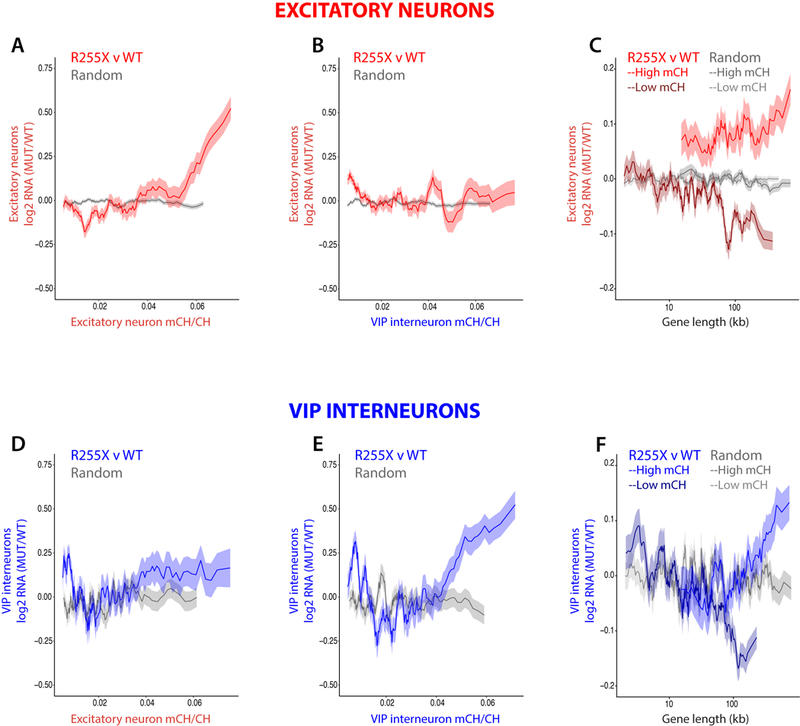 Cell-type-specific DNA methylation patterns predict gene misregulation in Rett syndrome. For each graph in A-B and D-E, mean fold-change in gene expression of R255X MECP2 nuclei compared to WT nuclei (R255X v WT) or of two groups of the respective cell type that were randomly assigned transcriptotypes (Random) is binned according to the fraction of gene body DNA methylation (mCH/CH). Gene expression changes (FDR