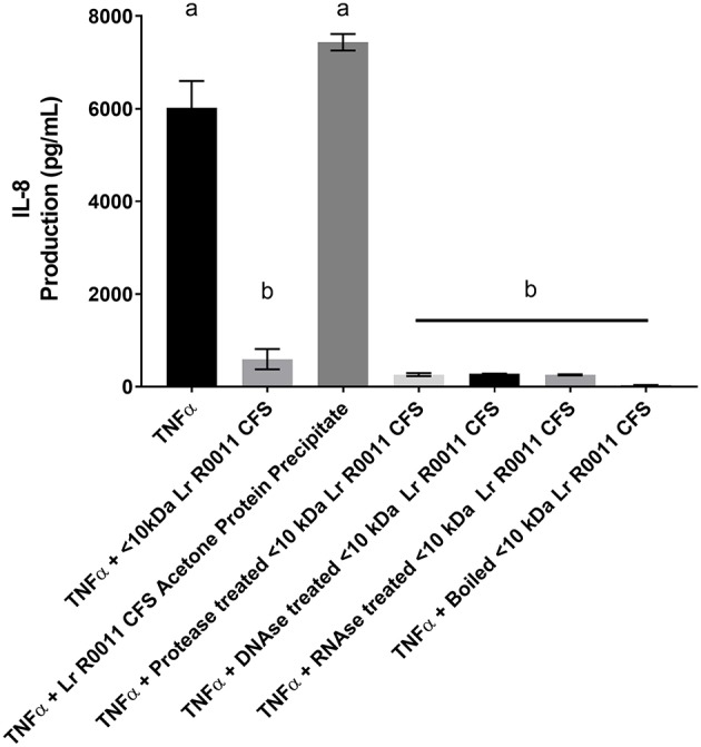 HT-29 IEC stimulated with TNFα and cultured with boiled Lr-CFS, an acetone precipitate of the Lr-CFS, or Lr-CFS treated with RNAse, DNAse or protease for 6 h ( n = 3). Data shown are the mean IL-8 production ± SEM. Different letters between treatments denote significance ( P
