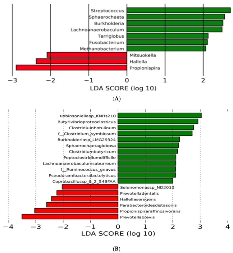 Linear discriminant analysis effect size (LEfSe) of rumen microbiota of beef steer fed no (control) or 200 mg/d of monensin. The linear discriminant analysis plot indicates the most differentially abundant taxa found by ranking according to their effect size (≥2.0) at the genus ( A ) and species level ( B ). The taxa enriched in steers fed the control diet are indicated with a positive score (green), and taxa enriched by the monensin treatment have a negative score (red). Only taxa meeting the significant threshold of 2.0 are shown.