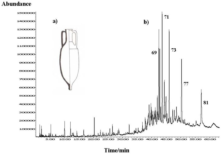 ( a ) Scheme of the Greco-Italian amphora type Benoit Republicane-II/Lamboglia with the section representing the coating. ( b ) Total ion chromatogram of the organic residue headspace composition obtained by HS-SPME (DVB/CAR/PDMS fibre) on HP-5MS column. Numbers refer to Table 1 .