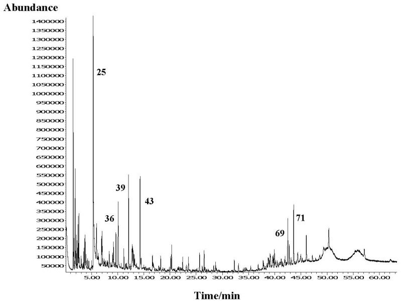 Total ion chromatogram of the organic residue headspace composition obtained by HS-SPME (PDMS/DVB fiber) on HP-5MS column. Numbers refer to Table 1 .