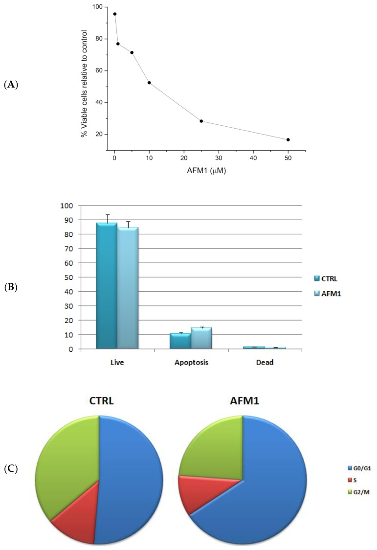 ( A ) Cell viability related to HepG2 cells after AFM1 treatment for 48 h. ( B ) Percentage of live, apoptotic, and dead cells (mean ± standard deviation) for HepG2 cells at IC 50 concentration before (CTRL) and after (AFM1) 48 h of treatment. ( C ) Cell percentages in G0/G1, S, and G2/M phases (mean ± standard deviation) for HepG2 cells at IC 50 concentration before (CTRL) and after (AFM1) 48 h of treatment.