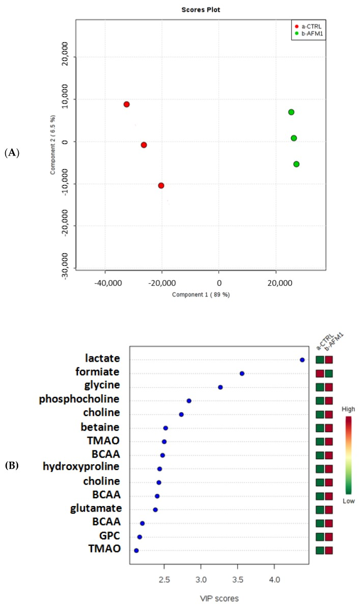 Partial least squares-discriminant analysis (PLS-DA) ( A ) and variable importance in projection (VIP) ( B ) plots related to the polar fraction of the HepG2 cell line treated with AFM1 compared to untreated cells.