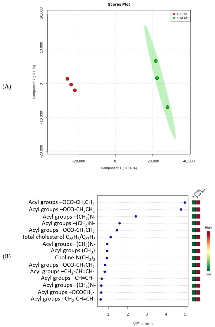 Partial least squares-discriminant analysis (PLS-DA) ( A ) and variable importance in projection (VIP) ( B ) plots related to the lipidic fraction of the HepG2 cell line treated with AFM1 compared to untreated cells.