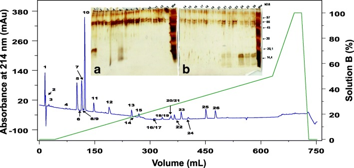 Cutaneous secretion chromatogram in C18 column RP-FPLC and the SDS-PAGE profile of each fraction. The blue line represents the absorbance monitored at 214 nm and the green line represents the concentration of solution B. Each fraction was analyzed in SDS-PAGE stained with silver (insert figures). Insert figure a represents fractions CS1 to CS13 and insert figure b shows fractions CS14 to CS26. The wells at left show the low molecular weight marker from GE Healthcare