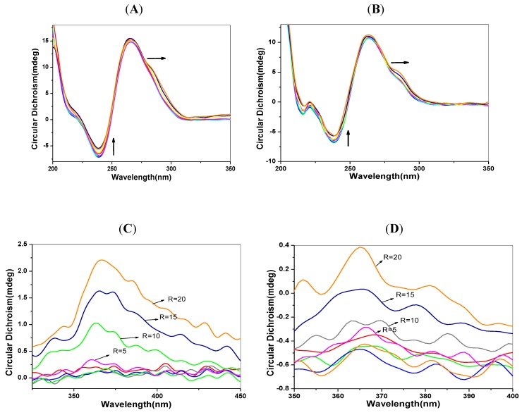 CD and ICD spectra of DNA solutions (5 μmol/L) with the addition of 1-PBO (0–20 μmol/L). ( A ) CDspectra of p53 DNA; ( B ) CDspectra of C-myc DNA; ( C ) ICDspectra of p53 DNA and ( D ) ICDspectra of C-myc DNA.