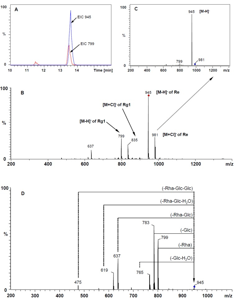 Mass spectra of ginsenoside Rg 1 and Re in negative mode. ( A ) EIC of m/z 945 and 799; ( B ) HPLC-ESI-MS spectra; ( C ) the CID spectra of adduct ion [M+Cl] − of ginsenoside Re at m/z 981; ( D ) the CID spectra of parent ion [M−H] − of ginsenoside Re at m/z 945 (The deprotonated ion is indicated by a vertical arrow).