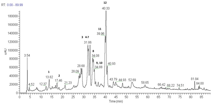 Total ion current chromatogram of the methanol extract of capitulae of P. chiquitensis (HPLC-ESI-IT-MS n negative ion mode). For conditions, see experimental part.