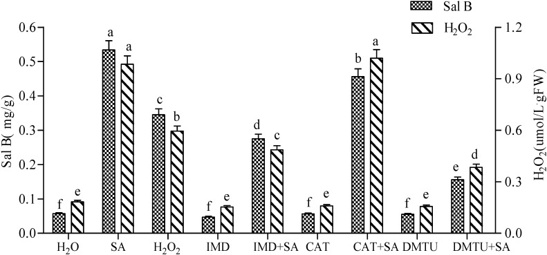 Effects of salicylic acid (SA), H 2 O 2 , imidazole (IMD), catalase <t>(CAT),</t> dimethylthiourea <t>(DMTU)</t> and complex treatments on the production of Sal B and H 2 O 2 in Salvia miltiorrhiza cell cultures. The concentrations for SA, H 2 O 2 , IMD, CAT and DMTU were 22 mg·L − 1 , 10 mmol·L − 1 , 100 μmol·L − 1 , 100 U and 500 μmol·L − 1 , respectively. SA was added to subcultured Salvia miltiorrhiza cells after 8 d culture, and both contents of H 2 O 2 and Sal B were determined in the subsequent 8 h and 2 d, respectively, with three replications. Different lowercase letters represented significance at 0.05.