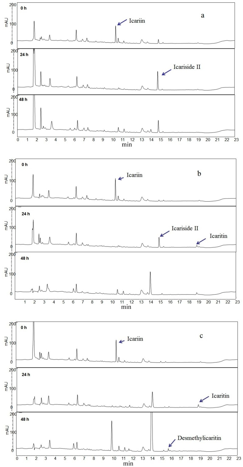 HPLC chromatograms of icariin biotransformation products. Each chromatogram was obtained from the different human intestinal microflora. Microflora a , b and c showed icariside II, icaritin and desmethylicaritin formation, respectively, after 48 h.