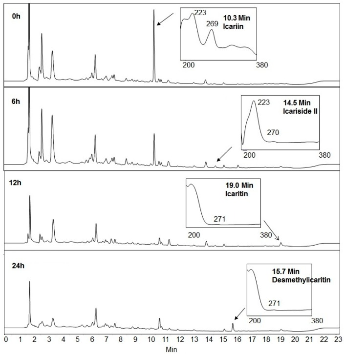 HPLC chromatogram changes at 270 nm absorption over icariin metabolism by Blautia sp. MRG-PMF1.