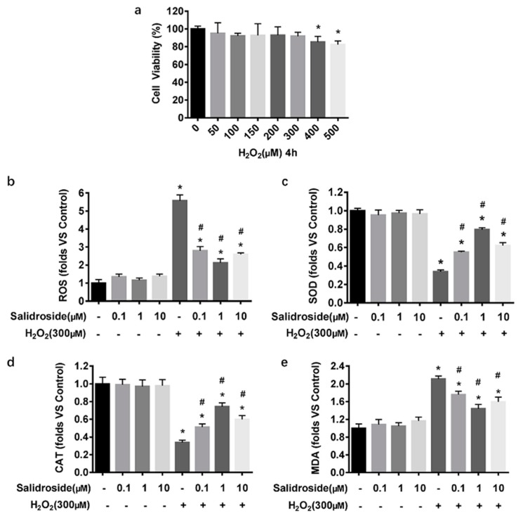 SAL reduces H 2 O 2 -induced ROS production and MDA formation and increases the activities of antioxidant enzymes in HUVECs. ( a ) HUVECs were treated with various concentrations of H 2 O 2 (0–500 μM) for 4 h, and cell viability was determined by MTT assay. ( b – e ) HUVECs were incubated without any intervention (control), SAL (0.1, 1, 10 μM) for 24 h, or 300 μM H 2 O 2 for 4 h, or 0.1, 1, 10 μM SAL for 24 h followed by 300 μM H 2 O 2 for an additional 4 h. ( b ) Intercellular ROS levels: Intercellular ROS levels were determined by DCFH-DA fluorescence. After various treatment, the cells were stained with 10 μM DCFH-DA in serum free medium for 30 min in the dark. Fluorescence intensity was recorded using a Synergy TM 4 Multi-Mode Microplate Reader at an excitation wavelength of 488 nm and an emission wavelength of 525 nm. ( c – e ) SOD, CAT activities, and MDA content: SOD, CAT activities, and MDA content were measured using respective assay kits. Data are presented as mean ± SD values of three independent experiments. * p