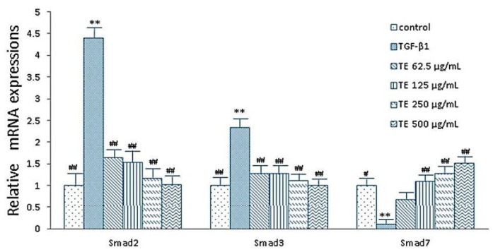 Effects of echinacoside on the expressions of smad2, smad3 and smad7 in HSC (RT-PCR assay). Data were expressed as mean ± SD. ** p